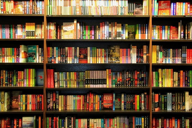 biblioteca alcobaça